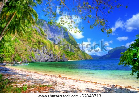 pictorial tropical shore - stock photo