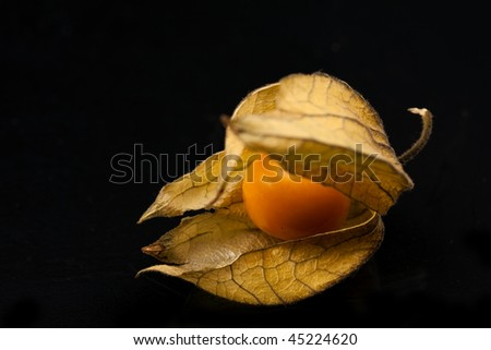 Picture from a gooseberry. - stock photo