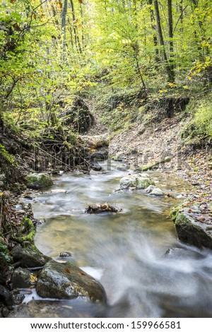 Picture of a stream in a forest in summer with a long exposure time in the autumn. - stock photo