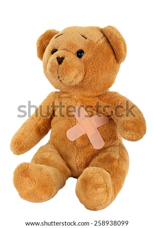 Picture of a teddy bear on isolated background - stock photo