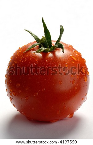 Picture of a tomato on a white background - stock photo