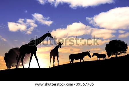 Picture of african animals in savannah at dawn time - stock photo