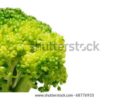 Picture of Broccoli close-up - stock photo