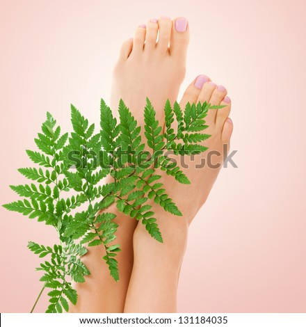 picture of female feet with green fern leaf over beige background - stock photo