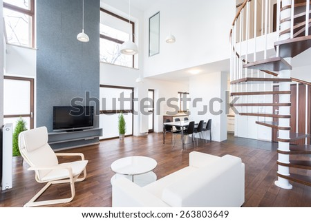 Picture of luxury mansion in modern design - stock photo
