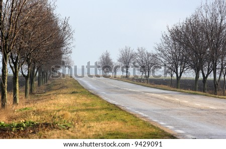 Picture of road in countryside - stock photo