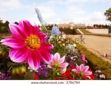 Picture of the Garden at the Palace of Versailles in France - stock photo
