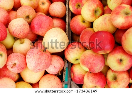 Picture of two wooden crates loaded with organic apples next to each other - stock photo