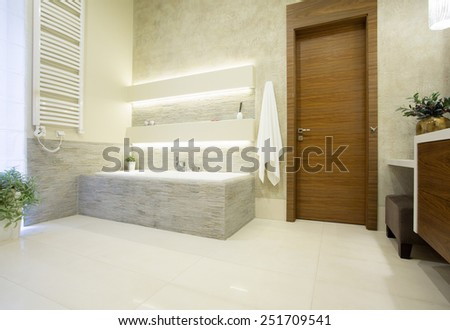Picture of wooden entrance door to the luxury bathroom - stock photo