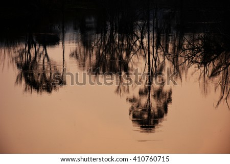 picture reflections from the water clear as mirror. - stock photo