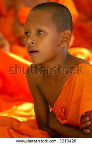 Picture taken in Phuket, Thailand. - stock photo