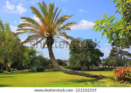 picturesque area in the Park Ramat Hanadiv, Memorial Gardens where buried Baron Edmond de Rothschild, Israel - stock photo