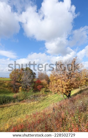 picturesque autumn landscape beautiful white clouds on blue sky over a field and trees with colorful leaves on a sunny day - stock photo