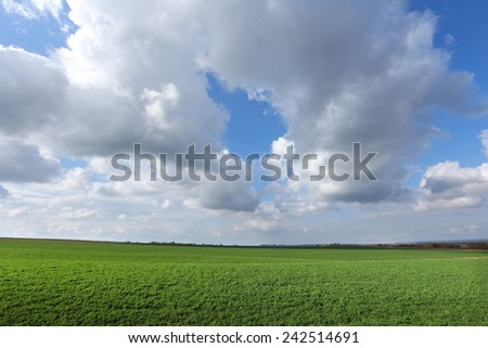 picturesque autumn landscape beautiful white clouds on blue sky over a field  on a sunny day - stock photo