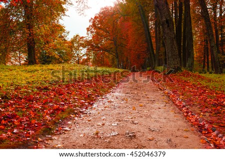 Picturesque autumn landscape view of autumn park with fallen autumn leaves, soft filter applied -colorful autumn landscape in cloudy weather with red autumn trees along lonely autumn alley - stock photo