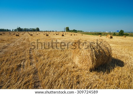 Picturesque countryside landscape. Round straw bales in harvested fields and blue sky   - stock photo