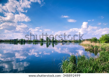 Picturesque forest and the river - stock photo