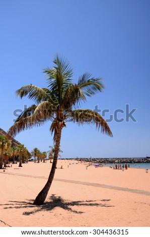 picturesque gorgeous playa de las Teresitas on Tenerife island, Spain - stock photo