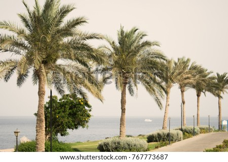 picturesque landscape embankment exotic country vacation stock photo