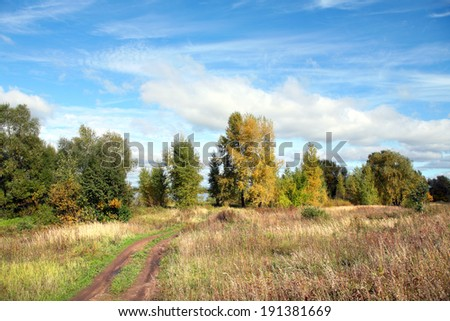 picturesque landscape of a dirt road in the meadows near the woods during the Indian summer