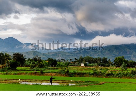 picturesque landscape rice field and lake with fisherman in vietnam and mountaine view - stock photo