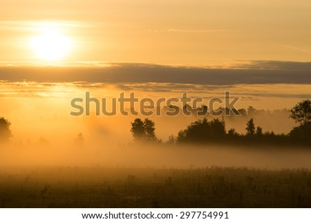 Picturesque misty sunrise landscape. Foggy morning meadow,