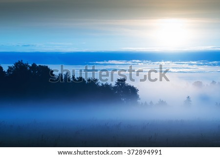 Picturesque misty sunrise landscape. Foggy morning meadow, - stock photo