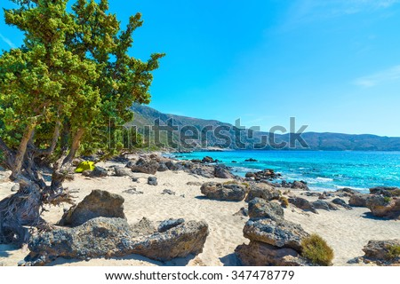 Picturesque rocky wild Kedrodasos beach near famous Elafonisi (or Elafonissi).Vintage cedar tree in the foreground.District of Chania.Crete.Greece.Europe. - stock photo