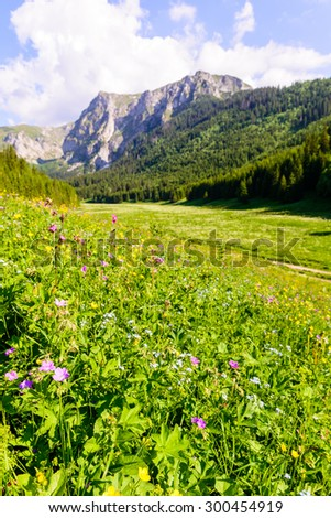 Picturesque Tatra Mountain scenery in the Tatrzanski National Park, Poland.