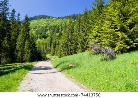 Picturesque Tatra Mountain scenery in the Tatrzanski National Park, Poland. - stock photo