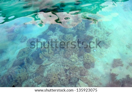 Picturesque type of a bottom of the Red Sea in turquoise tones