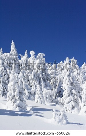 Picturesque  view of snow covered trees on mountains. - stock photo