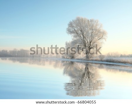 Picturesque winter landscape of frozen trees illuminated by the rising sun. - stock photo