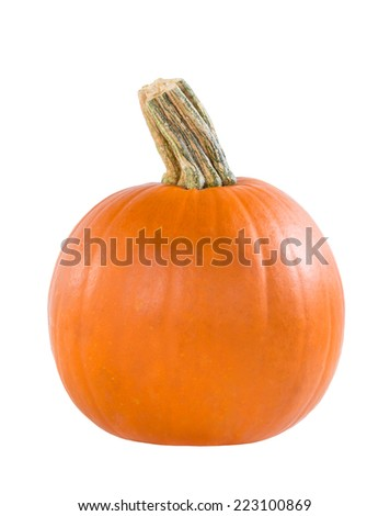 Pie pumpkin isolated on white