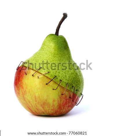 piece of an apple and a pear stapled together symbolizing the negative aspects of genetic engineering - stock photo