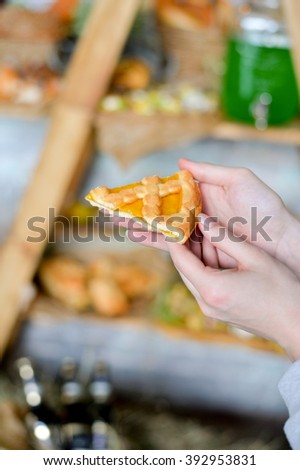 piece of pumpkin pie  - stock photo