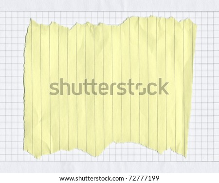 piece of torn lined paper on white squared paper, edges are frayed - stock photo