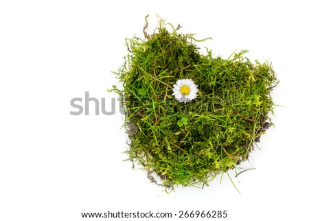 piece of turf and moss in heart shape with a daisy isolated on white background, concept for love, health or environmental protection - stock photo