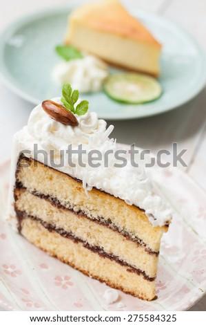 Piece Of Vanilla Cake ,Close Up - stock photo