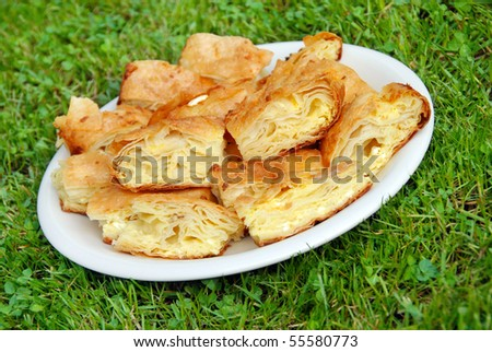 pieces of appetizing homemade baked cheese pie on white  plate over green grass - stock photo