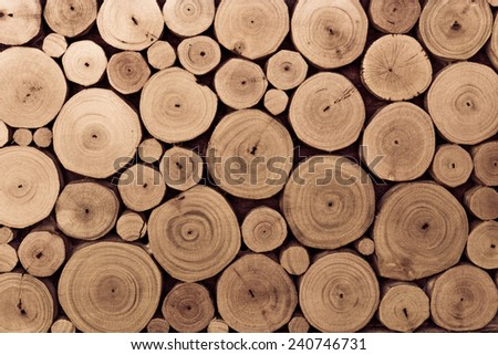 pieces of round teak wood stump background - stock photo