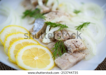 pieces of salted herring with onions and spices