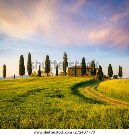 Pienza, Sunset over Tuscany, landscape and cypress trees in Italy - stock photo