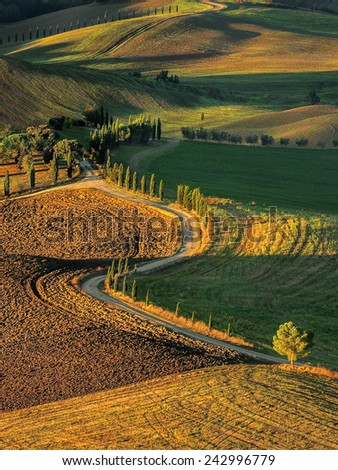 Pienza Toscana Italy, road to the pictures of which were made into the famous  movie GLADIATOR - stock photo