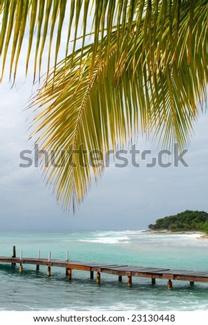 Pier & palm tree on beach;  Utila, Bay Islands, Honduras