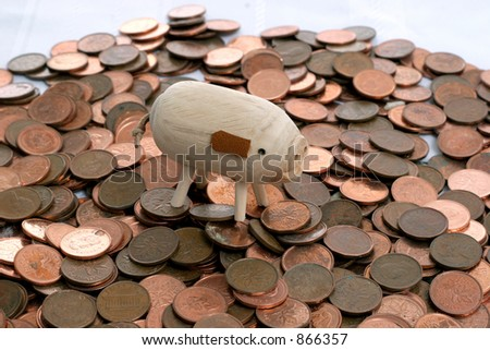 pig standing on money - stock photo