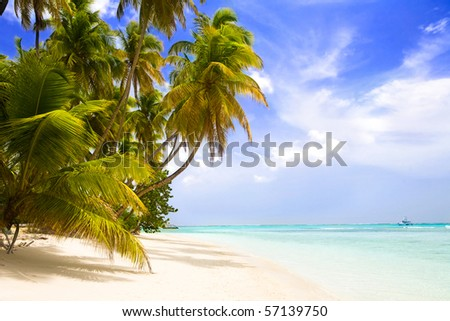 pigeon point beach tobago - stock photo