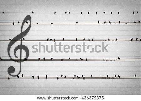 Pigeons on the electrical wires with the music notes on old paper look like music notes,musical concept