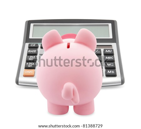 Piggy bank and callculator isolated on white background - stock photo