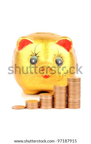 Piggy bank and coin - stock photo